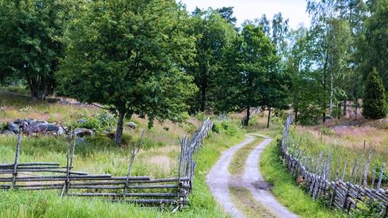 Hitta den trafikskola i västra Småland som passar dig bäst